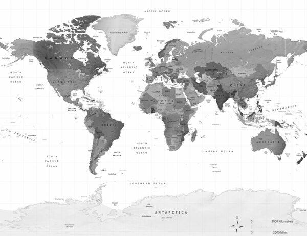 Fototapeta 3d Grey Earth szary przykład w kratkę   fototapety mapa świata