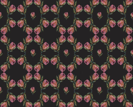 Fototapety Campo Tinieblas Czarne tło | fototapeta kwiaty