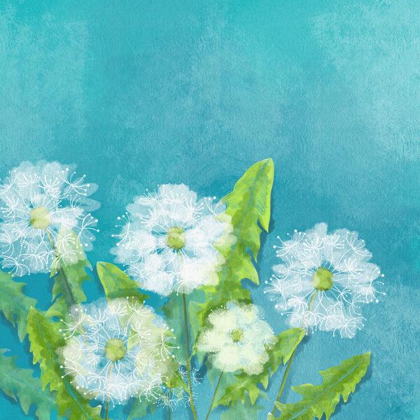 Fototapety Soft niebieskie odcienie | fototapeta kwiaty