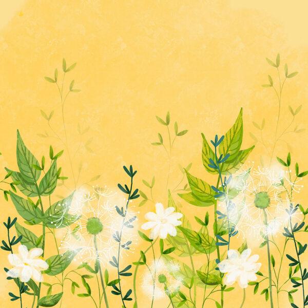 Fototapety Lot Balonem żółte odcienie| fototapeta kwiaty