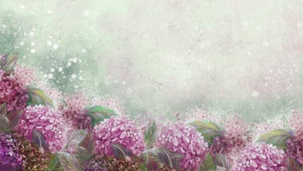 Fototapety Bloom Hydrangea fototapeta kwiaty | tapety 3d do sypialni