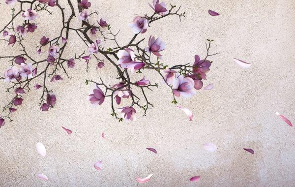 Fototapety Autunno Gold Pink fototapeta imitacja betonu | fototapeta kwiaty