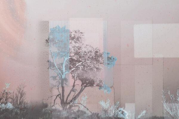 Fototapety Calmness Gray różowe odcienie | fototapeta las