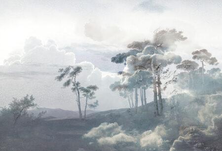 Fototapeta Las w Chmurach Armonia szare odcienie | tapety 3d do sypialni