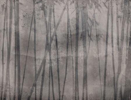 Fototapety Behind Summer szary przykład | tapeta las