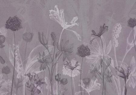 Fototapety Secret Garden fioletowe odcienie | fototapeta kwiaty