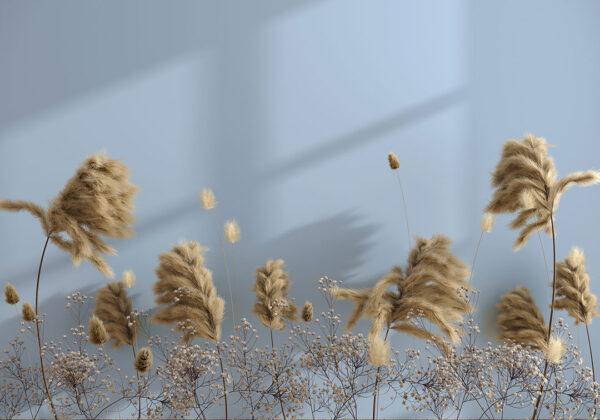 Fototapety Prejudice niebieskie tło | fototapeta kwiaty