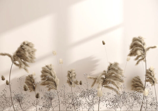 Fototapety Prejudice białe tło | fototapeta kwiaty