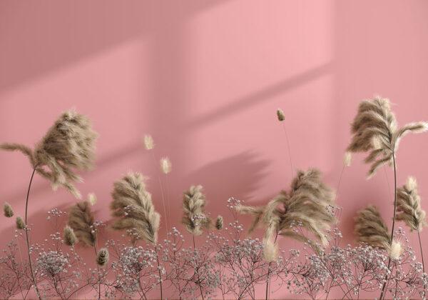 Fototapety Prejudice różowe tło | fototapeta kwiaty