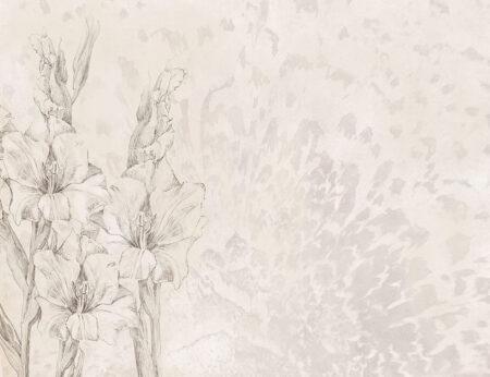 Fototapety Gladiole jasnoszare odcienie | fototapeta kwiaty