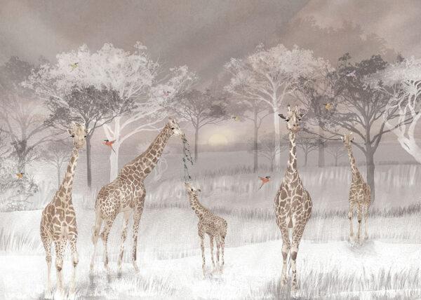 Fototapety Giraffen szary odcień | tapety 3d do salonu
