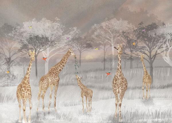 Fototapety Giraffen szary tło | tapety 3d do salonu