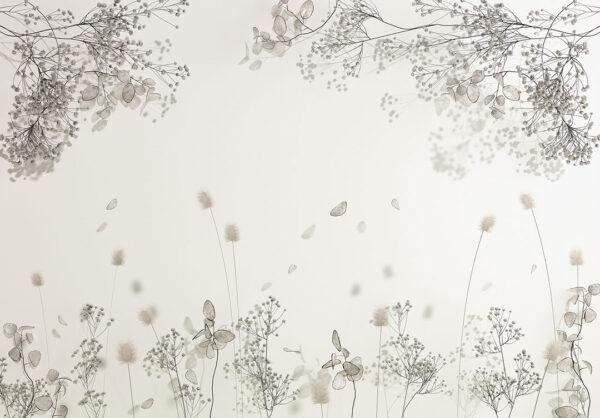 Fototapety Calma białe odcienie | kwiaty fototapeta