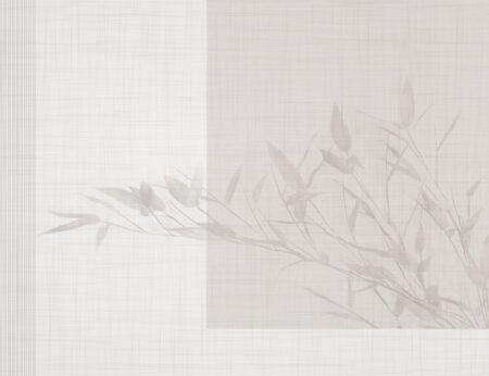 Fototapeta Cień Liści szare odcienie | fototapety kwiaty