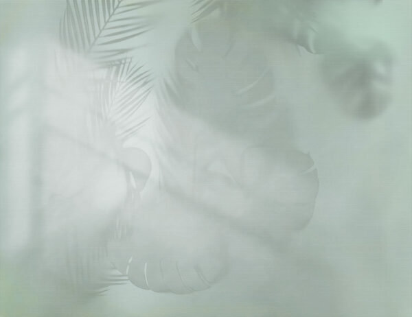 Fototapety Shadow zielone odcienie | tapeta 3d do łazienki