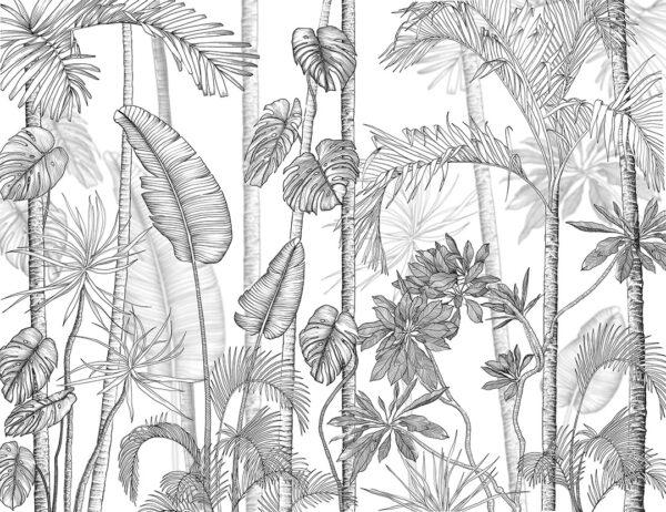 Fototapety Randers czarny i biały | fototapeta kwiaty