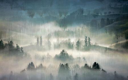 Fototapeta Mglisty Las zielone odcienie | fototapeta las we mgle