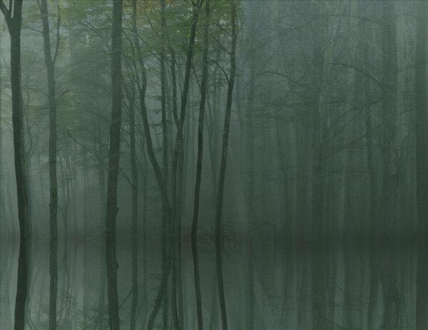 Fototapety Toftir zielone odcienie | tapety 3d do salonu