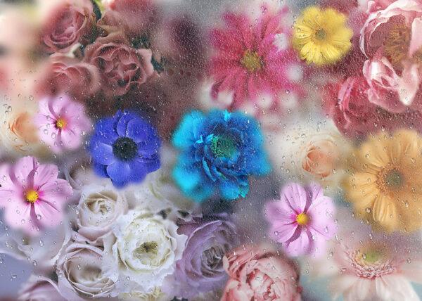 Fototapety La rosée piękne kwiaty   fototapeta kwiaty