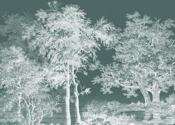 Fototapety Enigmatique zielone odcienie | fototapeta las