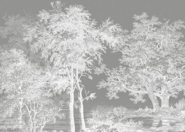 Fototapety Enigmatique szare odcienie | tapeta las