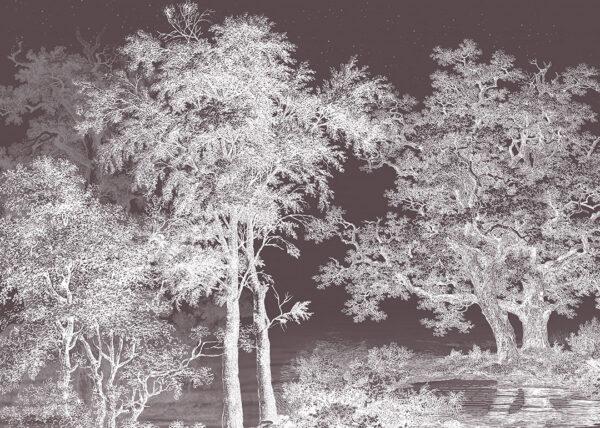Fototapety Enigmatique brązowe odcienie | tapeta las i tapety 3d