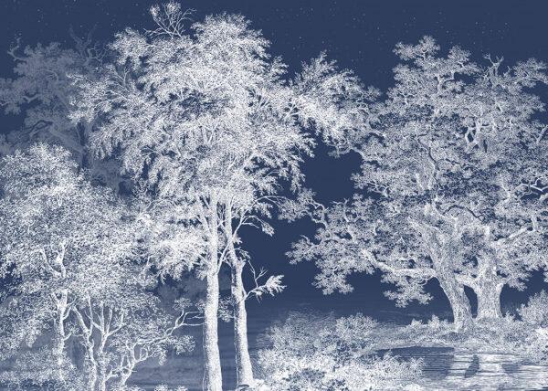 Fototapety Enigmatique niebieskie odcienie | tapeta las