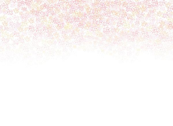 Fototapety Vaciller różowe odcienie na białym tle | tapeta do pokoju młodzieżowego