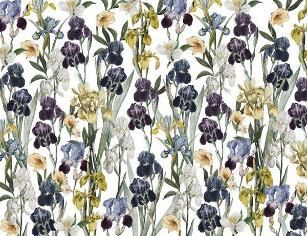 Fototapety Irises szare odcienie | fototapeta kwiaty