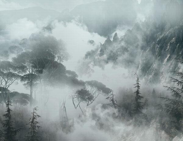 Fototapeta las w górach we mgle na szarym tle