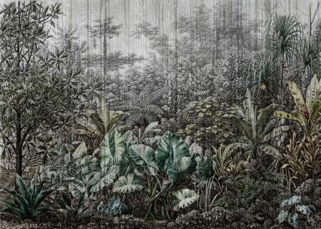 Las deszczowy z różnymi drzewami w zielone odcienie ostre tło